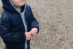 20 Million Steps: a parent's view